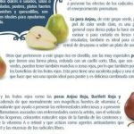 Las peras y los antioxidantes
