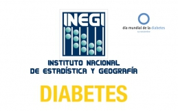 Estadísticas Diabetes INEGI 2013