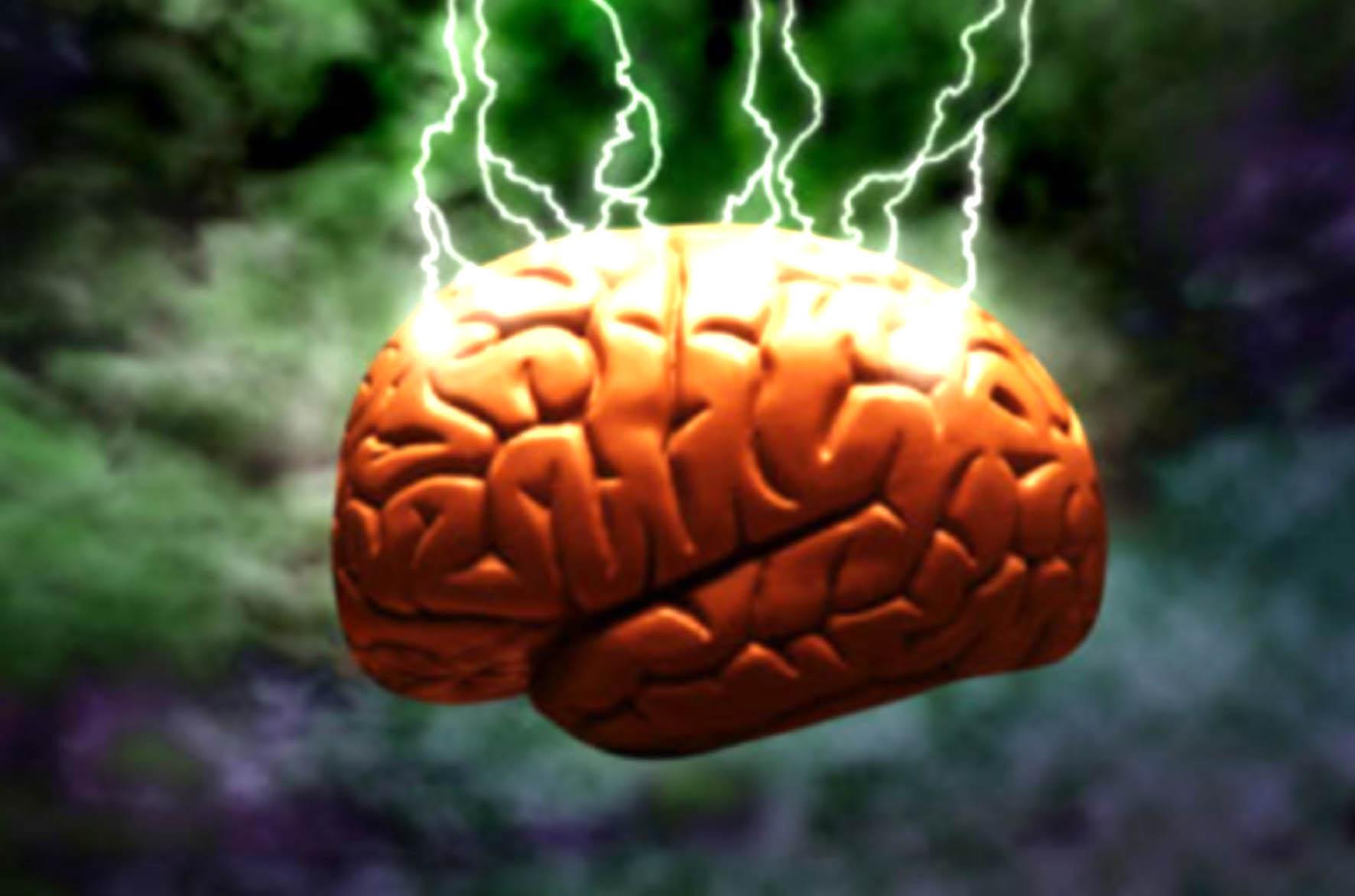 Especialistas intercambian propuestas para mejorar calidad de vida de pacientes con epilepsia