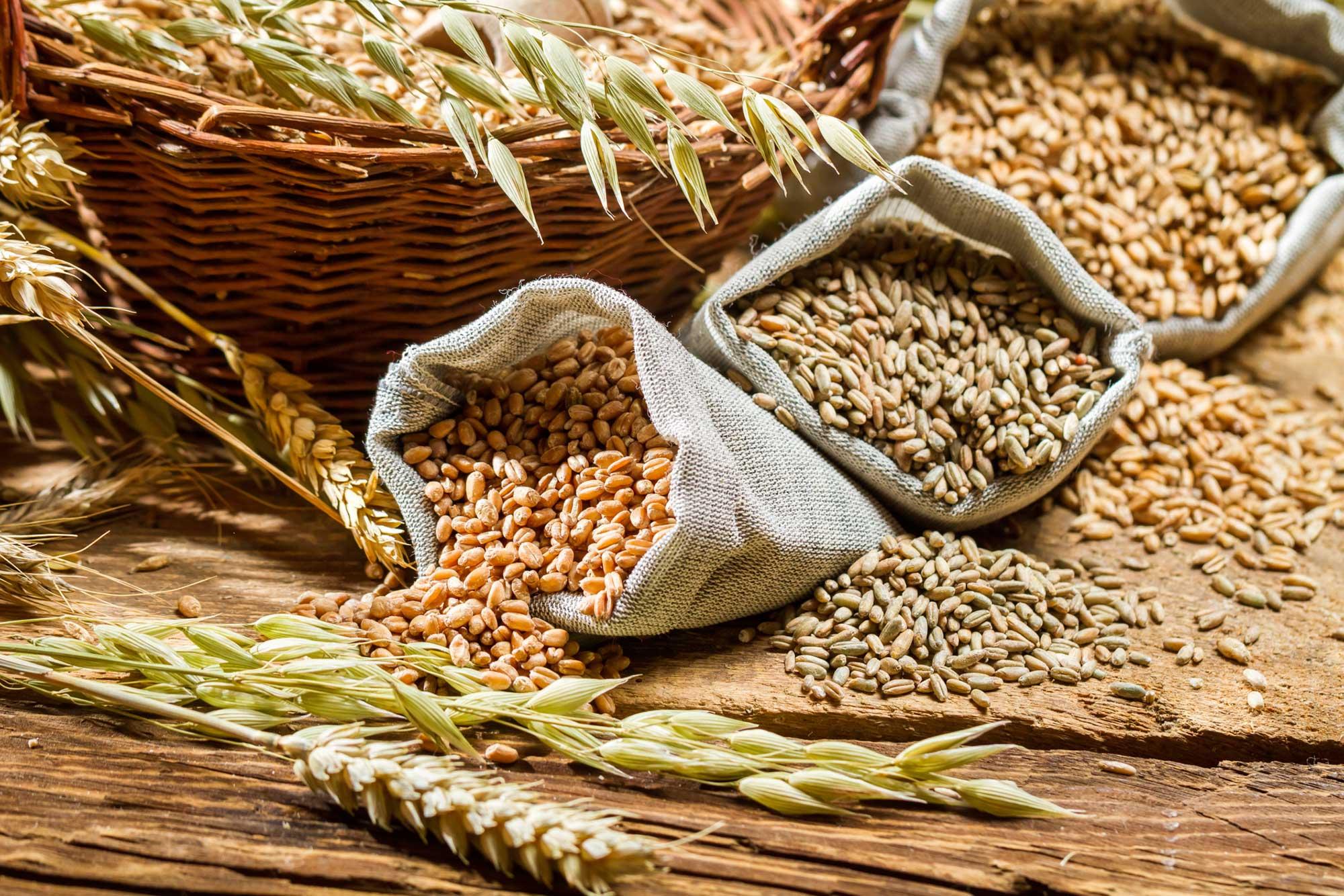 Comer granos integrales para una vida más larga