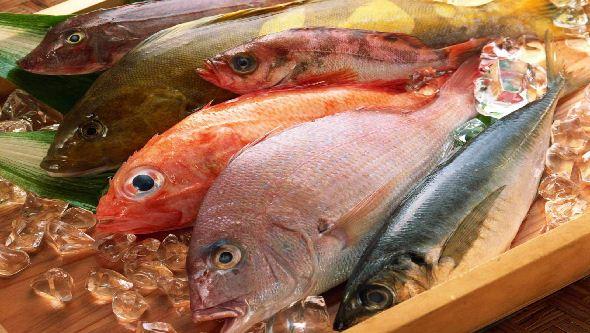 Pescado buena fuente de omega 3