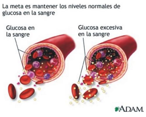 Niveles altos de glucosa en sangre