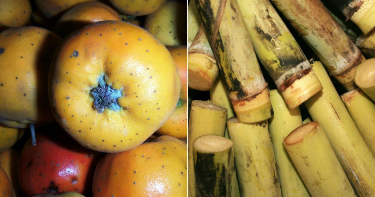 Valor nutrimental de las frutas para estas fiestas decembrinas