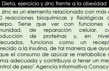 Dieta, ejercicio y zinc frente a la obesidad