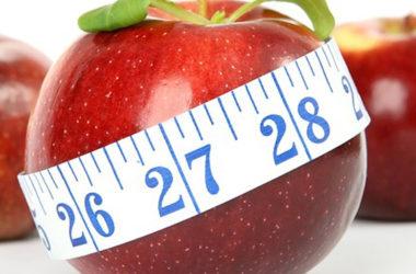 ¿Qué predispone la obesidad en preadolescentes?