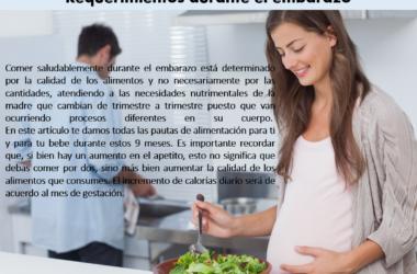 Guía de alimentación en el embarazo