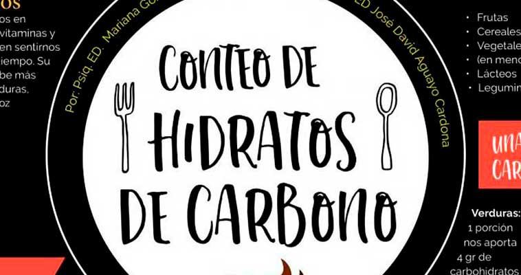Conteo de hidratos de carbono