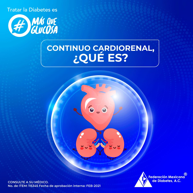 El continuo cardio renal