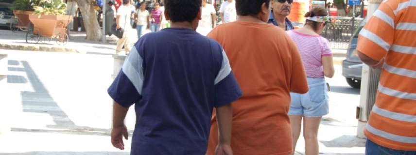 CREAN METFORMINA LÍQUIDA PARA CONTROLAR RESISTENCIA A LA INSULINA EN NIÑOS CON OBESIDAD