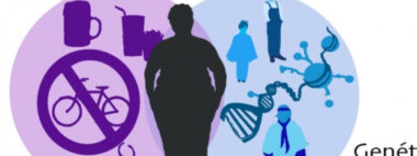 Alteraciones epigenómicas, diabetes y obesidad